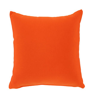 Orange Outdoor Pillow