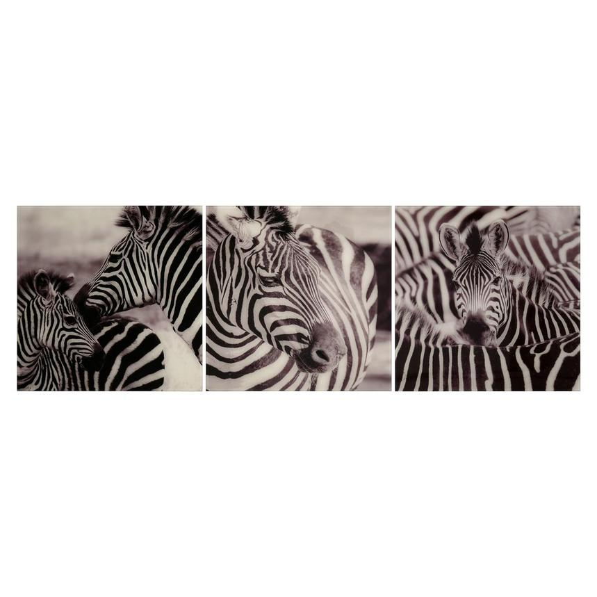 Zebra Set of 3 Acrylic Wall Art  main image, 1 of 4 images.