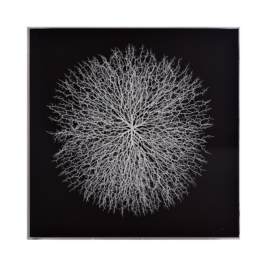 Clear Sea Fan Shadow Box  alternate image, 5 of 7 images.