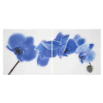 Orchidee Blue Set of 2 Acrylic Wall Art