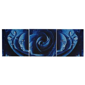 Rosa Set of 3 Acrylic Wall Art