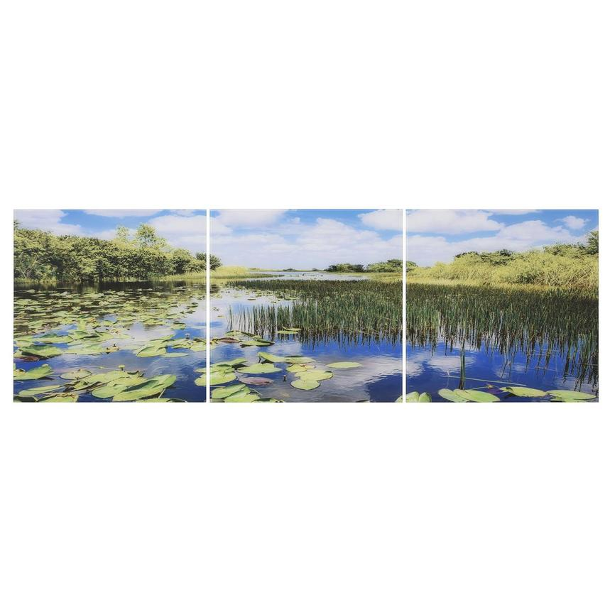 Everglades Set of 3 Acrylic Wall Art  main image, 1 of 4 images.