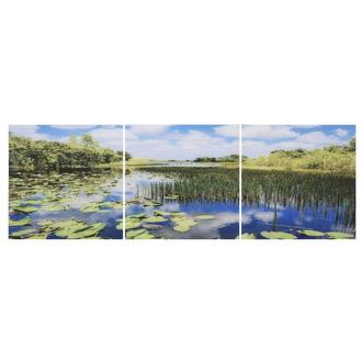 Everglades Set of 3 Acrylic Wall Art